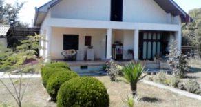 Дом на берегу Савы
