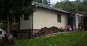 Дом 100м2 с участком 25 соток в селе Чортановци