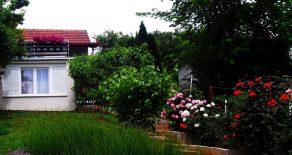 Дом 50м2 с мебелью и участком 6 соток в 30 км от Белграда